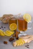 Tee mit Gewürzen Stockfotografie
