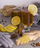 Tee mit Gewürzen Lizenzfreie Stockfotos
