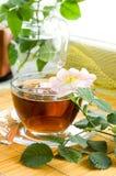 Tee mit Hund-stieg Blüte Stockbild