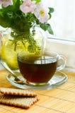 Tee mit Hund-stieg Blüte Stockfotos