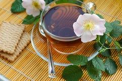 Tee mit Hund-stieg Blüte Stockfotografie