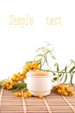 Tee mit Meerwegdorn Stockfotos