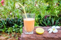 Tee mit Milch Lizenzfreies Stockbild