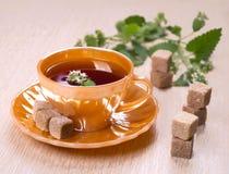 Tee mit Stücken Zucker Stockfoto