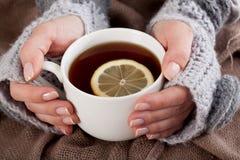 Tee mit Zitrone an einem kalten Tag lizenzfreie stockfotos