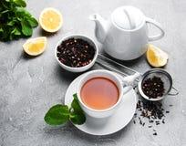 Tee mit Zitrone und Minze Lizenzfreies Stockbild