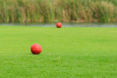 Tee off in golf course Royalty Free Stock Photo
