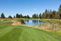 Tee off over Pond royalty free stock image
