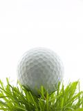 Tee Shot. Golf ball on tee in grass, isolated on white Stock Images