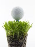 Tee Shot. Golf ball on tee, in the grass isolated on white royalty free stock image