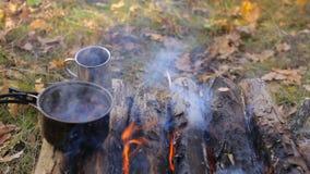 Tee und ein Becher auf dem Lagerfeuer in der Kampagne stock video
