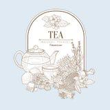 Tee, Vektor-Illustrations-Fahne Stockbilder