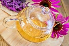Tee vom Echinacea in der Glasteekanne an Bord Stockfotografie