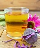 Tee vom Echinacea im Glasbecher mit Sieb Lizenzfreie Stockfotos