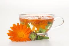 Tee von der Ringelblume medizinisch. Stockfoto