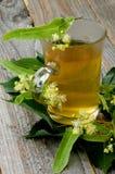 Tee von Linde-Baum-Blumen Stockbild