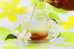 Tee wird in ein Cup gegossen Stockbild
