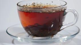 Tee wird in einem Cup gebraut stock footage