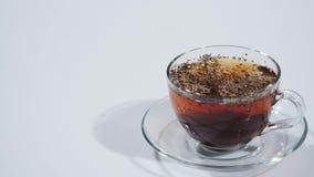Tee wird in einem Cup gebraut stock video