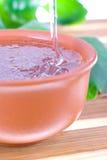 Teebaumschmieröl stockbilder