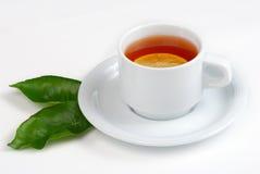Teecup und Blätter der Zitrone Stockbild