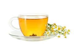 Teecup und -kamille Lizenzfreies Stockbild