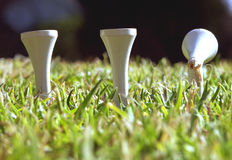 Teed off!. Guess whi is feeling a bit teed off Stock Images
