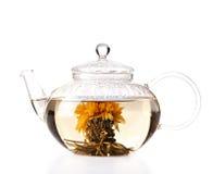 Teekanne mit dem grünen Kräutertee lokalisiert Lizenzfreie Stockbilder