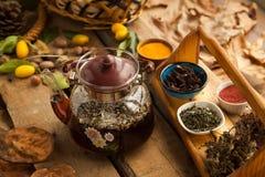 Teekanne mit Gartennelke und Kardamom Stockbilder