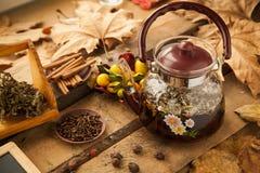 Teekanne mit Gartennelke und Kardamom Stockfotografie