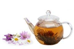 Teekanne mit gebrautem Blumentee und Blumen Lizenzfreies Stockbild