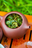 Teekanne mit grünem oolong Lizenzfreie Stockfotografie