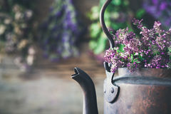 Teekessel voll des Thymians für gesunden Kräutertee Lizenzfreies Stockfoto