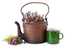 Teekessel voll von Thymianblumen, von Becher Kräutertee und von Bündel Thymian Lizenzfreie Stockbilder