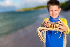 Teen age boy holding crab Royalty Free Stock Images