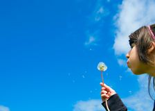 Teen and blowball Royalty Free Stock Photos