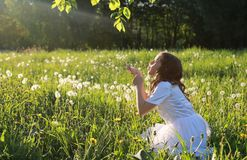 Teen blowing seeds from a dandelion flower in a spring park. A teen blowing seeds from a dandelion flower in a spring park Royalty Free Stock Photos