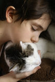Teen boy with cat close up portrait Stock Images