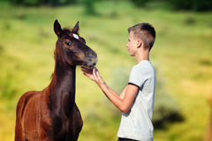 Teen boy communicates with horse Royalty Free Stock Images