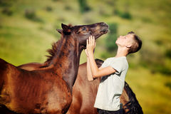 Teen boy communicates with horses Royalty Free Stock Photo