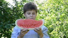Teen boy eating  slice of watermelon on nature stock video