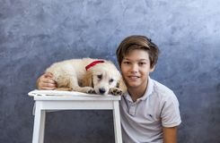 Teen boy with golden retriever. Portrait of teen boy with golden retriever by the wall stock images
