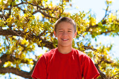 Teen boy happy and smiling Royalty Free Stock Photos