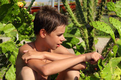 Teen boy  looking at the cactus Stock Photo