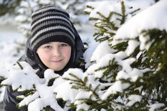 Teen boy looks out from behind trees in  winter forest Royalty Free Stock Image
