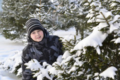 Teen boy looks out from behind trees in  winter forest Royalty Free Stock Photography