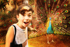 Teen boy with pea in asian zoo. Teen boy admire peacock in asian zoo smiling photo wow stock photo