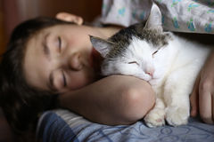 Teen boy sleep with cat in bed hug. Close up photo Stock Photography