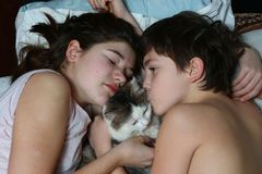 Teen brother and sister boy and girl cuddling cat. Teen brother and sister boy and girl cuddle cat in bed cloes up morning photo Royalty Free Stock Photos