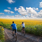 Teen couple riding bike in sunflower field stock photo